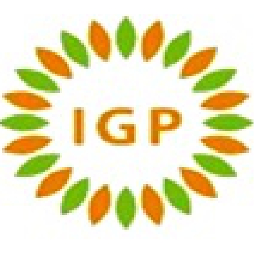 PT IGP INTERNASIONAL